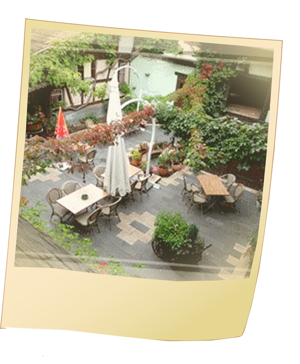 Terrasse Ombragée Les Plantes à Choisir: Le Meisenberg Restaurant Chatenois Manger Alsacien Auberge
